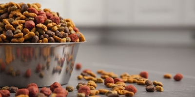 Lawsuit Alleges Beneful Is Deadly Dog Food